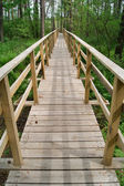 Footbridge over the swamp — Stock Photo