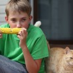 Boy eating corn — Stock Photo #6438508