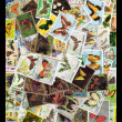 Butterfly Stamps - Stock Photo