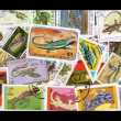 Reptile Stamps - Stock Photo
