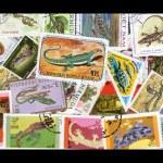 Постер, плакат: Reptile Stamps