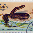 Cuban Snake Postage Stamp — Stock Photo