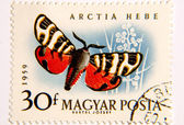 Tiger Moth Stamp — Stock Photo