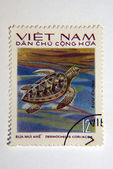 Vietnamese Turtle Postage Stamp — Stock Photo