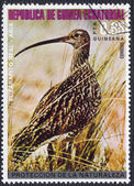 Eurasian Curlew on a Postage Stamp from Equatorial Guinea — Stock Photo