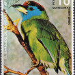 Stamp Showing a Blue Throated Barbet - Stock Photo