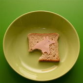 A pig on toast — Stock Photo