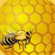 Bee with honeycomb — Stockvectorbeeld