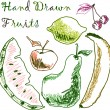Hand drawn fruits — Stock Vector #6449002