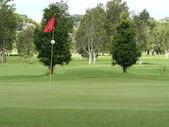 Golf Course Green — Stock Photo