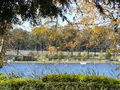Pretty Lake View — Stock Photo