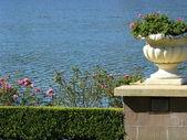 Garten urn — Stockfoto