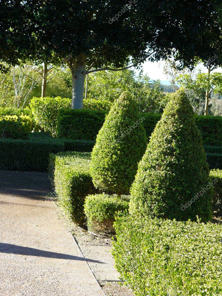 Trayectoria del jard n con setos formales foto de stock - Setos de jardin ...