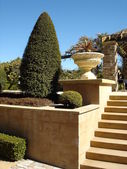 Pathway with formal hedges, stone steps — Stock Photo