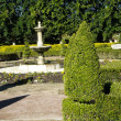 Stock Photo: Topiary and Hedges