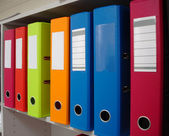 Brightly Coloured Binders for Office Filing — Stock Photo