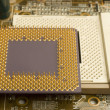 Microprocessor on socket - Stock Photo