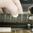 Installing RAM memory into motherboard — Stock Photo