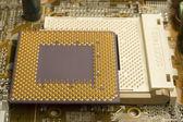 Microprocessor on socket — Stock Photo