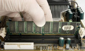 Installing RAM memory into motherboard — Photo