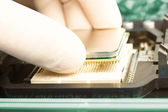 Inserting CPU — Stock Photo