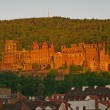 Heidelberger Schloss, Castle, summer 2010 — Stock Photo