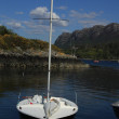 Boat on the lake in Scotland — Stock Photo #6014611