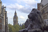 Trafalgar square lew — Zdjęcie stockowe