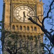 Stock Photo: Big Ben clockface