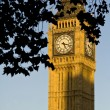 Big Ben on sunset light — Stock Photo