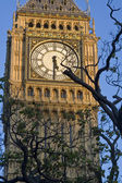 Big Ben clockface — Stock Photo
