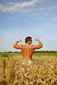 Bodybuilder standing waist-deep in the field — Stock Photo
