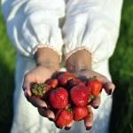 Handful of strawberries in hands — Stock Photo