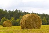 Duas pilhas de palha no campo — Fotografia Stock