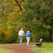 Senior citizen couple walking on path — Stock Photo #5978819