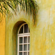 Arched window with palm branch - Stock Photo
