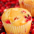 Cranberry Muffins — Stock Photo