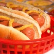 Hot Dogs with condiments — Stock Photo