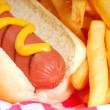Royalty-Free Stock Photo: Hot dog with french fries