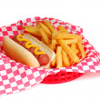 Hot dog and fries — Stock Photo