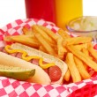 Hot dog with french fries - Stock Photo