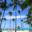 Beach scene in the Dominican Republic — Stock Photo