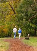 Senior citizen couple walking on path — Stock Photo
