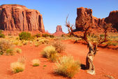 Large rock formations in the Navajo park Monument Valley — Stock Photo