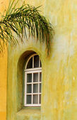Arched window with palm branch — Stock Photo