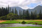 Golf course on Kauai, Hawaii — Stock Photo