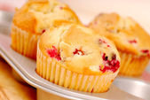 Freshly baked cranberry muffins — Stock Photo