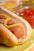 Hot dog with condiments — Stock Photo