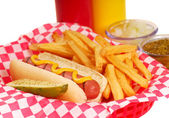 Hot dog with french fries — Stock Photo