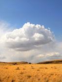 Fırtına bulutları ile kırsal çayır — Stok fotoğraf